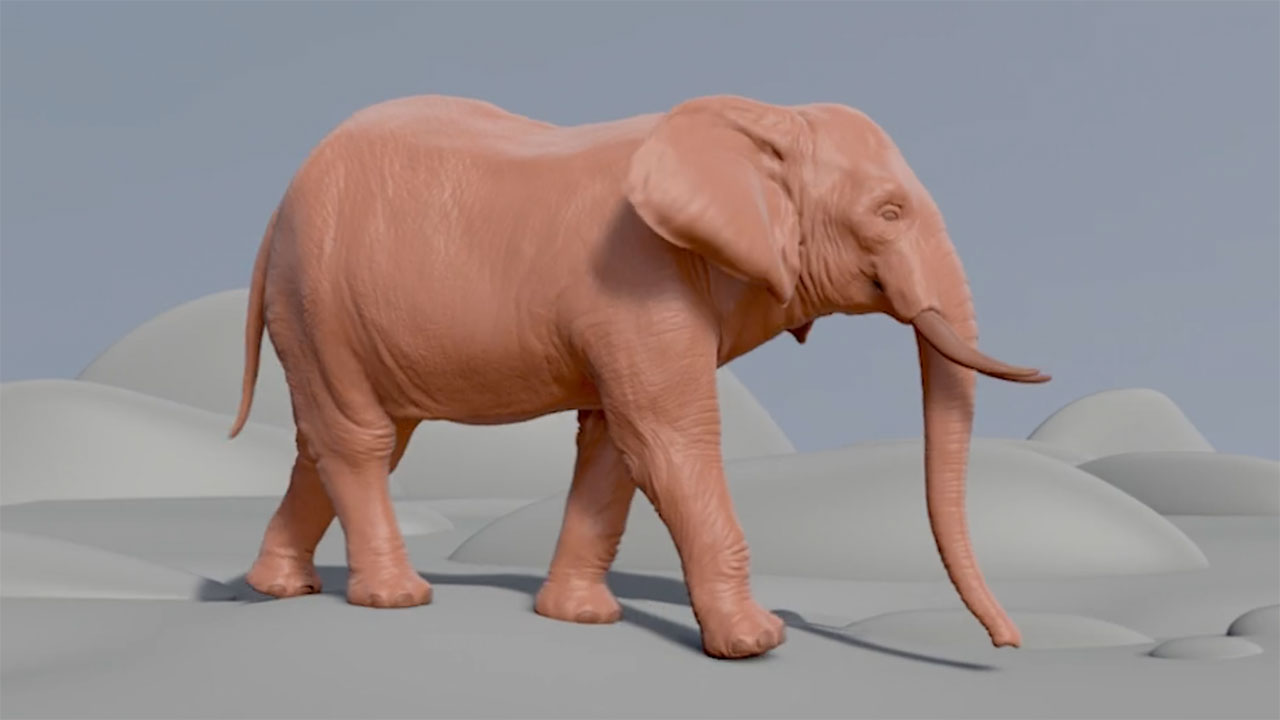 ELEFANT Walk | 3d Creature Animator