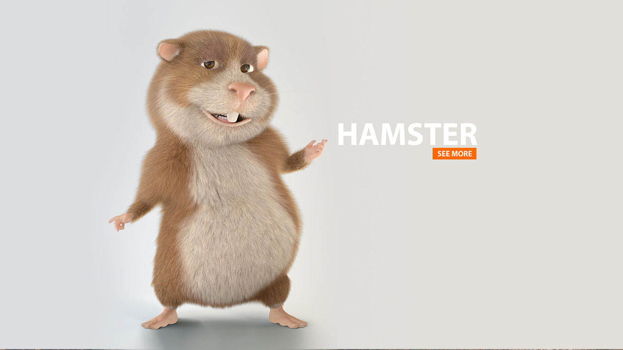 HAMSTER | 3d Cartoon Animation